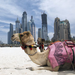 The number of guests to Dubai is steadily increasing. // © 2014 Thinkstock