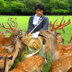 <p>More than 1,000 deer live in Nara Park, and feeding them snacks, available for purchase in the park, is often a highlight for guests. // © 2014...