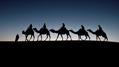 Travel Bucket List: A Camel Ride Through the Sahara Desert