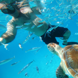 Travelers of all ages are looking for soft adventure activities. // © 2013 Island Routes Caribbean Adventure
