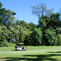 A free round of golf at Naniloa Golf Course is a perk for Hilo Naniloa Hotel guests. // © Hilo Naniloa Hotel