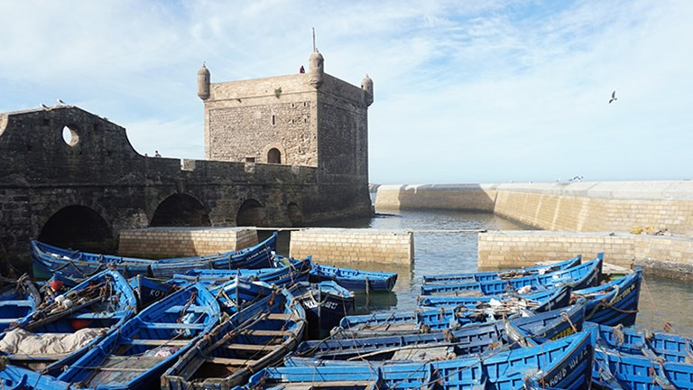 Clients on the trip spend two nights in Essaouira, a laid-back coastal city. // © 2018 Valerie Chen