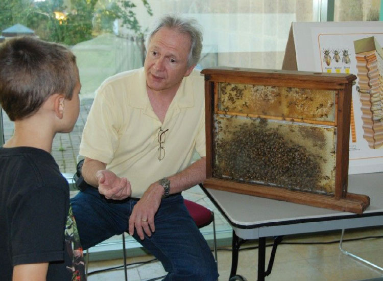 Guests can learns about the life cycle of bees at Patuxent Research NWR Honey Harvest Festival // © Nell Baldacchino/USFWS