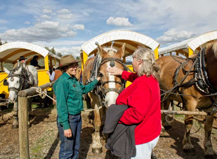 At the end of a covered wagon ride at Yellowstone National Park, guests can dig into an Old West cookout feast. // © 2014 Xanterra Parks & Resorts